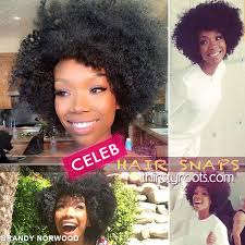 Brandy Hairstyles Brandy Shows Off Her Fro