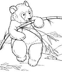 young bear coloring coloring pages