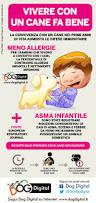 Ikea Cuccia Cane by Oltre 25 Fantastiche Idee Su Cani Su Pinterest Cani Carini Cani