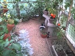 Homemade Outdoor Misting System by Pvc Greenhouse Mister System Youtube