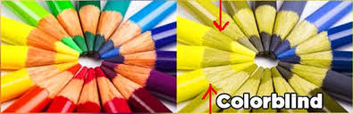 People Who Are Color Blind Have You Ever Noticed How Most Popular Cartoon Characters Are