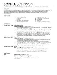 finance executive resume template financial business