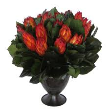 Red Flowers In A Vase Small Metal Trophy Vase Red Protea Traditional Artificial