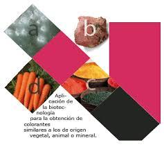 colorantes y pigmentos microbianos en la belleza cosmética