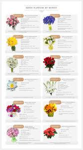 flowers of the month birth flowers by month ukraine infographic