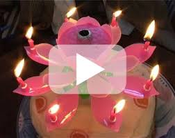 birthday candle flower this week january 9 18 changing bookstore