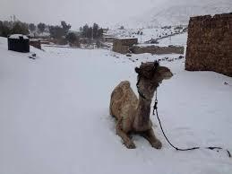Snow In Sahara Rare Snow Storm Hits Middle East Earth Earthsky