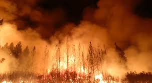 Wildfires California August 2017 by Wildfire Victims Sue Pg U0026e Over Inadequate Power Grid Maintenance