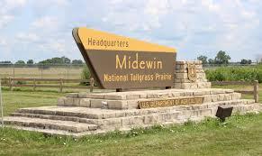 Bison Connect Department Of Interior Midewin National Tallgrass Prairie U2013 Openlands