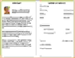 funeral program paper 12 funeral program ideasagenda template sle agenda template