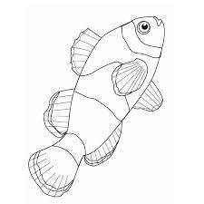 coloriage poisson les beaux dessins de animaux à imprimer et