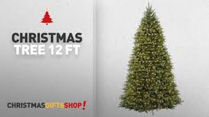 most popular tree 12 ft national tree 12 foot dunhill fir