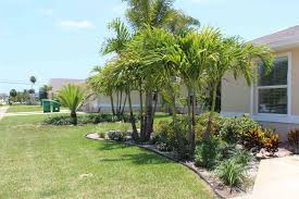 tropical landscaping especially for front yard home decor and