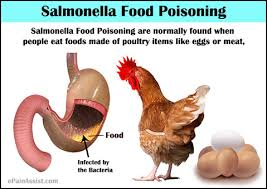 salmonella food poisoning causes symptoms treatment recovery period