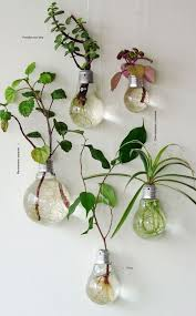 Hanging Decor From Ceiling by Best 25 Hanging Light Bulbs Ideas On Pinterest Light Bulb Vase