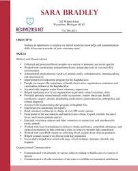 Best Resumes by Updated Best Resume Format 6 Hybrid Resume Example Latest