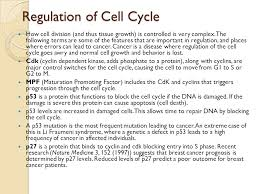 cell cycle stages and division of cell student view0 chapter2