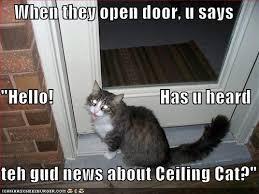 Ceiling Cat Meme - ceiling cat tribute gallery ebaum s world