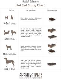 charming dog bed size 11 joules dog bed size guide bed sizes chart bed jpg