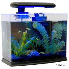 Home Aquarium Tetra Glofish Tank Petsolutions