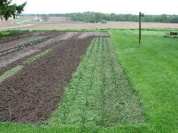 vegetable garden mulch finish landscaping u0026 backyards ideas