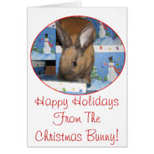 happy bunny christmas cards invitations greeting u0026 photo cards