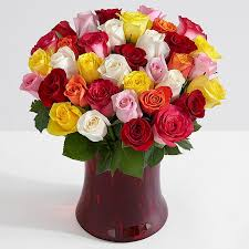 cheap flowers free delivery free flower delivery free shipping on flowers proflowers