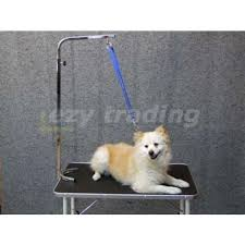 dog grooming tables for small dogs dog grooming tables for sale height adjustible vebo pet supplies