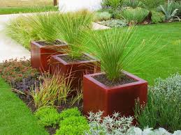 1067 best container gardens images on pinterest container garden