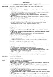 project coordinator resume assistant project coordinator resume sles velvet
