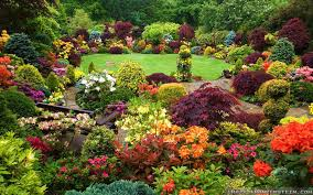 gousicteco most beautiful flower gardens in the world images