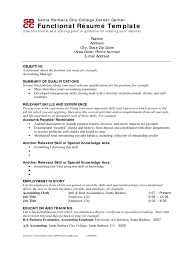 Brief Resume Example by Functional Resume Template Word
