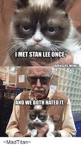 Stan Meme - imet stan lee once avengers memes and we both hatedit madtitan