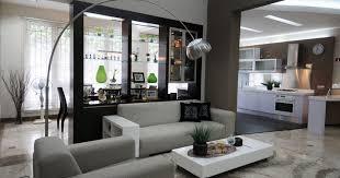 living room stunning minimalist 2017 living room photos interior