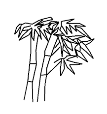 bamboo coloring pages aecost net aecost net