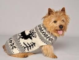 pet sweaters reindeer shawl sweater