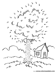 maple tree activity coloring page create a printout or activity