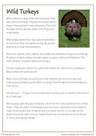 reading comprehension turkeys non fiction