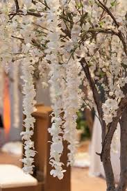 wedding trees ceremony décor photos cherry blossom tree with orchid strands