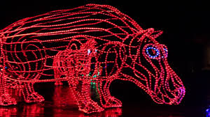 oregon zoo lights 2017 oregon zoolights 2017 youtube