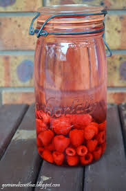 gormandize how to make your own raspberry infused vodka
