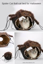 spider cat ball novelty halloween cat bed the cat ball