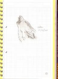 wolf for kids drawing bella24 2017 jan 29 2011