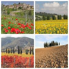 four seasons collage with spectacular tuscan landscape images