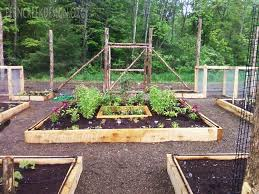 raised bed vegetable garden layout plans best garden reference