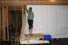 tasty cheap carpet for unfinished basement interesting best 25