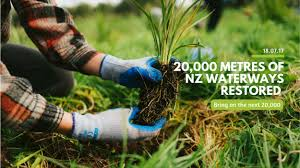 native plants of nz million metres streams project the sustainable business network