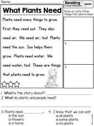plant life cycle freebie teacherspayteachers com children