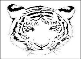 bengal tiger coloring pages coloring page