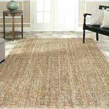 10 By 12 Area Rugs 10 X 12 Area Rugs 10 X 12 Rugs Home Depot Goldenbridges 10 X 12